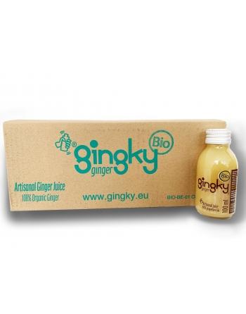 PACK 24*Gingky Original 100ml